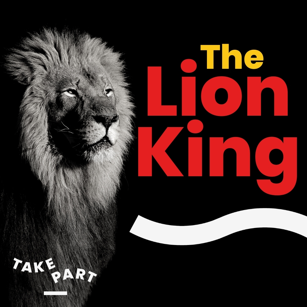 The Lion King Experience – Summer School
